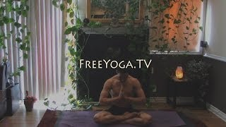 1/2hour well rounded intermediate Hatha Yoga class, by Stephen of FreeYoga.TV