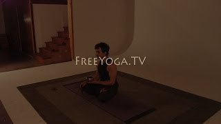 Full hr Intermediate Hatha Yoga Class, by Stephen founder of FreeYoga.TV